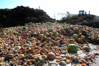 non-au-gaspillage-alimentaire-en-belgique