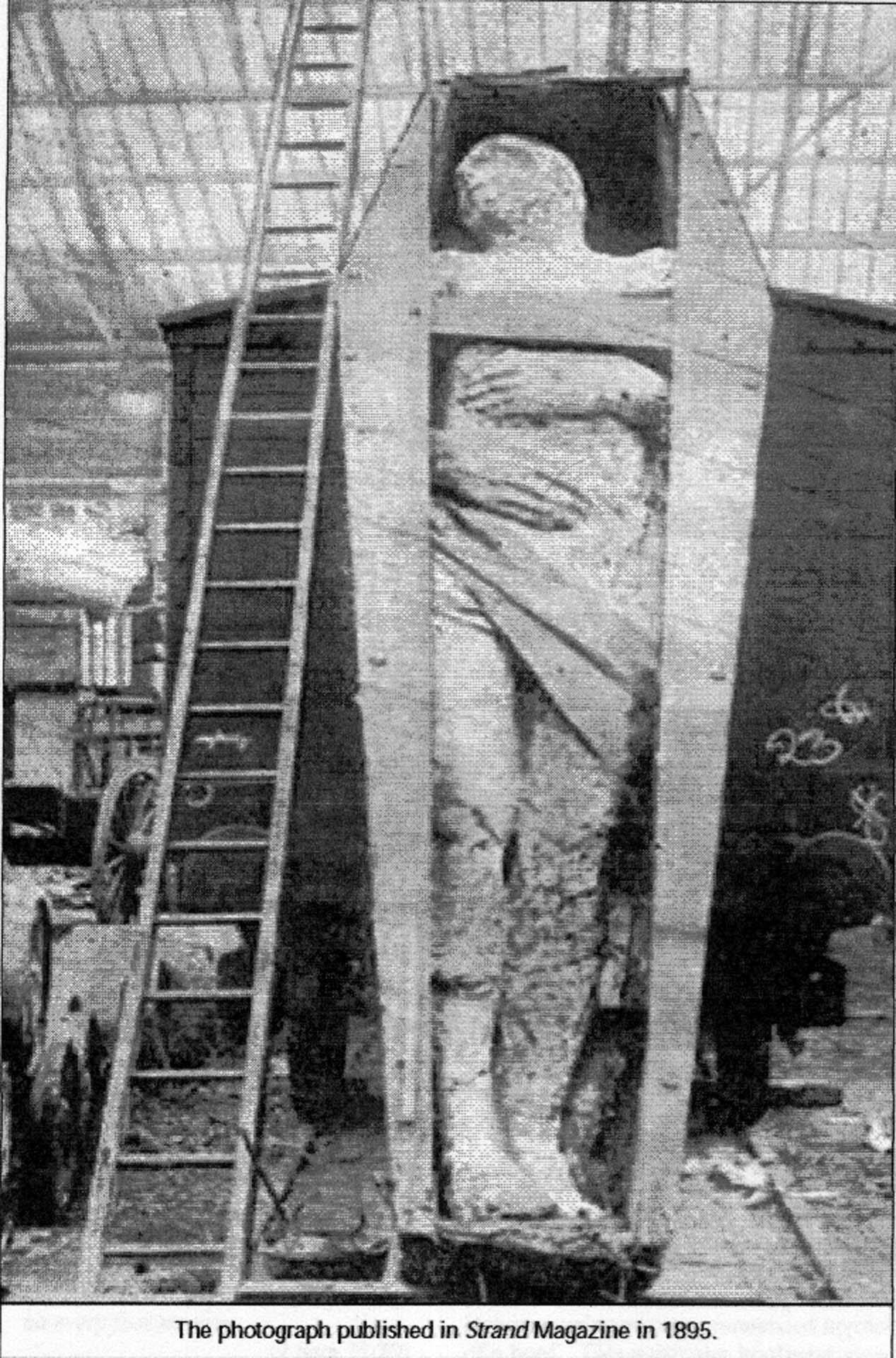 datation de carbone squelette géant
