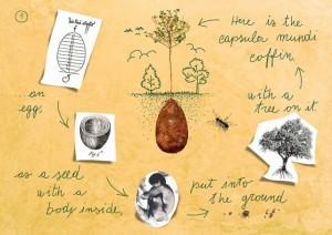 sacred-memory-forest-biodegradable-burial-pod-capsula-mundi-2-640x453