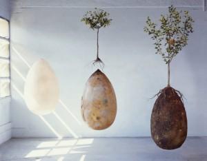 sacred-memory-forest-biodegradable-burial-pod-capsula-mundi-8-640x499