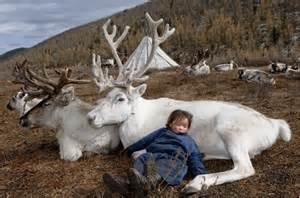 rennes en mongolie
